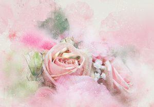 flowers-3641523_640